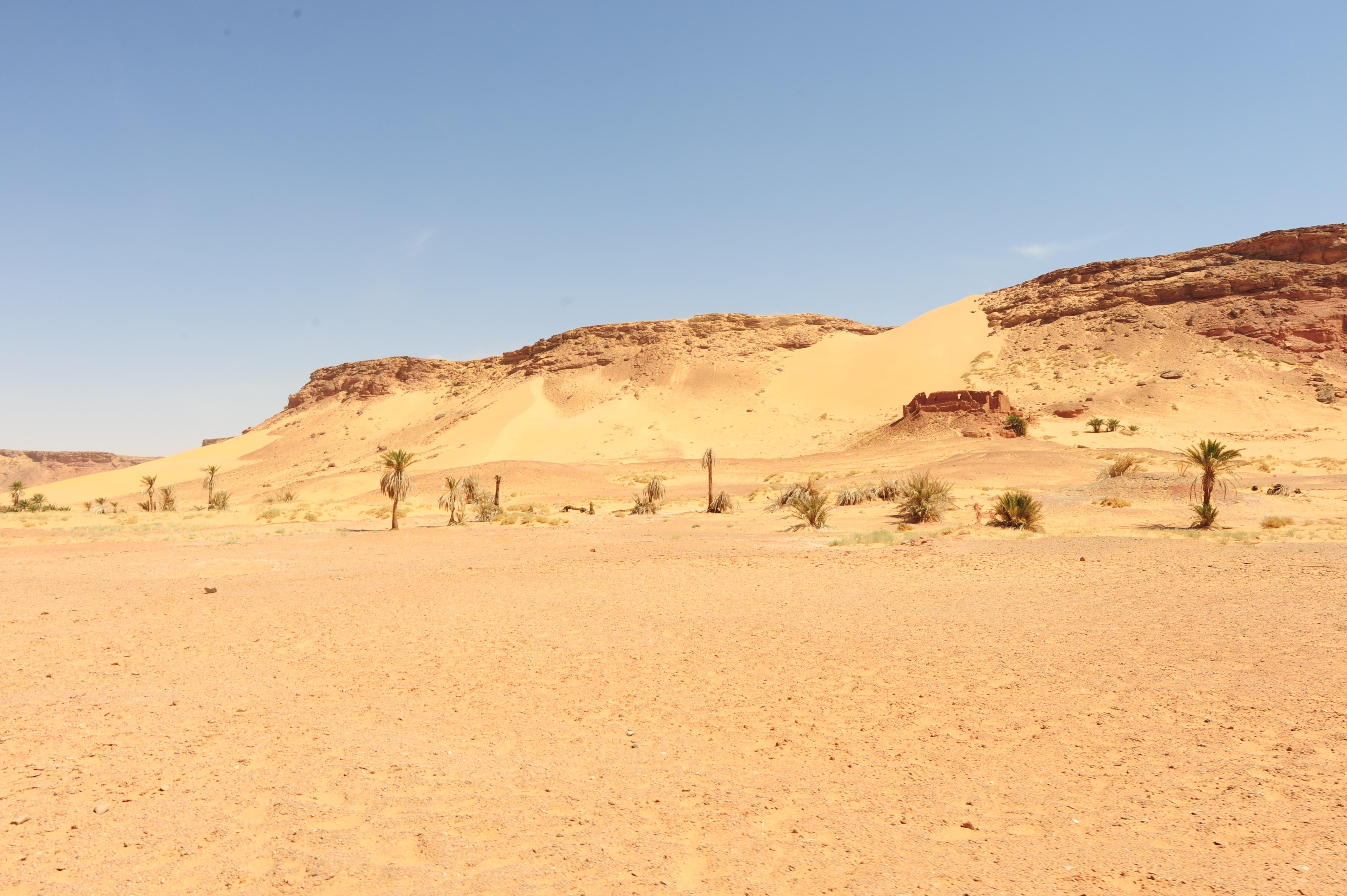 Desertificazione, Gourara, Algeria, ph. Pietro Laureano