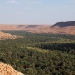 Wadi Ziz, Morocco, ph. Pietro Laureano